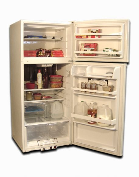 Food storage of the natural gas refrigerator EZ Freeze 15