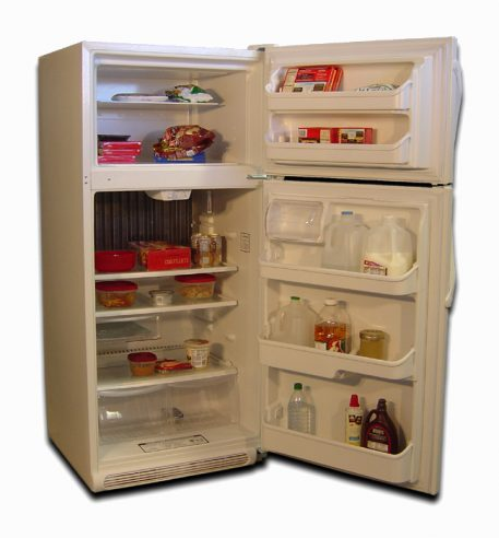 EZ Freeze EZ-19W gas refrigerator holds plenty of food for multiple people