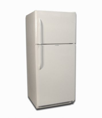 EZ Freeze 21 cubic foot propane gas refrigerator in wWhite color