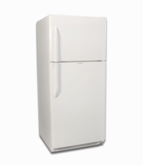 EZ Freeze white natural gas fridge 19 cu ft front closed