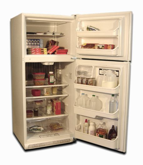 food storage of a gas refrigerator